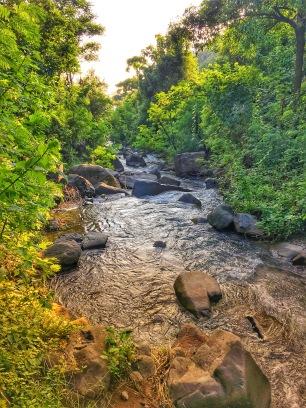 Mountain stream along the way
