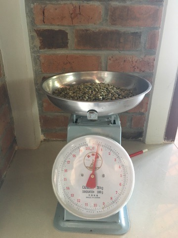 Weighing the beans