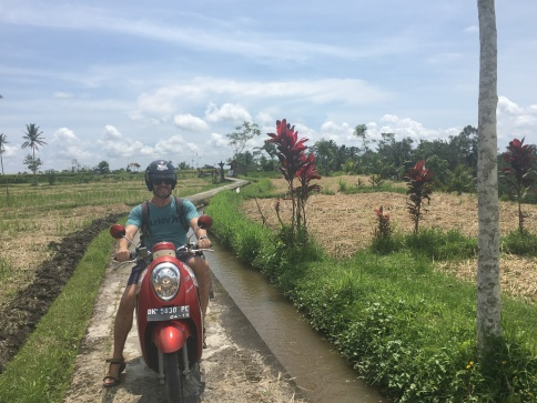 Riding a scooter in rice fields