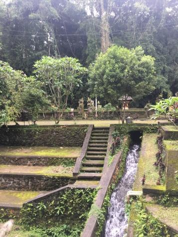 Beautiful sculpted gardens