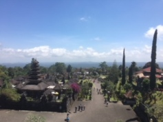 Views from the top of the temple steps